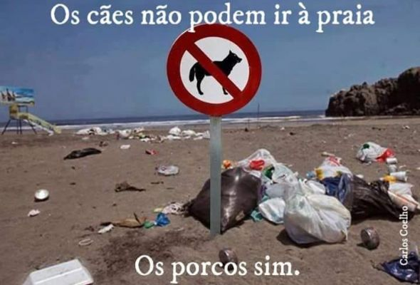 Click here to enlarge